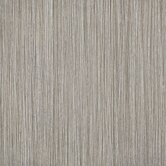 Bambu 12&quot; x 24&quot; Floor and Wall Tile in Dark