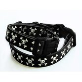 Paul Frank Signature Skurvy Dog Collar