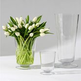Clear View Vase