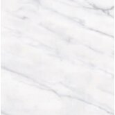 "Carrara Extra High Definition 12"" x 12"" Porcelain Matte Tile in White"