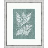 Buckler Fern on Spa Blue Linen I Wall Art