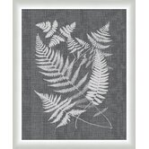 Buckler Ferns Framed Graphic Art