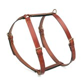 Classic Leather Dog Harness