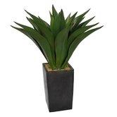 Realistic Giant Aloe Floor Plant in Planter