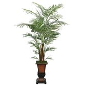 Realistic Areca Palm Tree in Decorative Planter