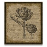 Artichoke Wall Art