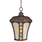 Lake Shore VX Outdoor Hanging Lantern in Antique Pecan