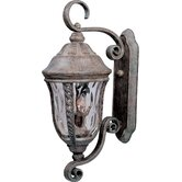 Whittier DC  Outdoor Wall Lantern in Earth Tone
