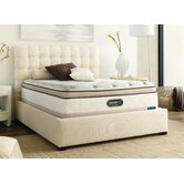 TruEnergy Yvette Plush Box Top Memory Foam Mattress