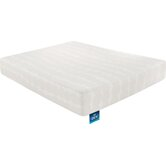 Simmons Beautyrest Foam and Latex Mattresses