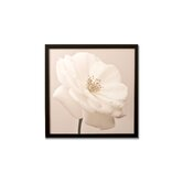 "White Rose Framed Printed Canvas Art - 20"" X 20"""