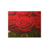 "Red Rose Row Printed Canvas Art - 16"" X 20"""