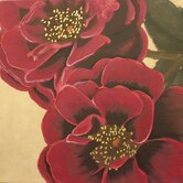 "Handpainted Two Plum Roses Printed Canvas Art - 24"" X 24"""