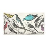 Wool Ornithology Scarf