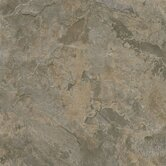 Alterna Mesa Stone 16&quot; x 16&quot; Vinyl Tile in Gray/Brown