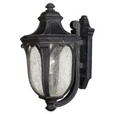 "Trafalgar  17.5"" x 8"" Outdoor Hanging Lantern in Museum Black - Energy Star Optional"