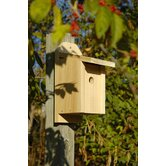 Chickadee Joy Box Bird House