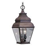 Exeter  Outdoor Hanging Lantern in Bronze