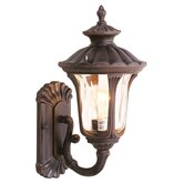Oxford Outdoor Wall Lantern with Light Amber Water Glass in Imperial Bronze