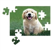 Golden Retriever Puppy Cardboard Jigsaw Puzzle