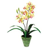 "Artificial Yellow Cymbidiums in a Green Terra Cotta Pot, 28"" Overall Height"