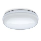 Orino Bulkhead Wall / Ceiling Light
