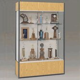Trophy and Art Display Case with Full Width Shelves