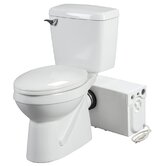Elongated Rear Discharge Toilet with Macerator System