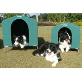 Collapsible Dog House in Green