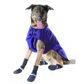 All Dog Apparel & Gear