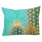 Cactus Pillow