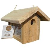 Bluebird Feeder