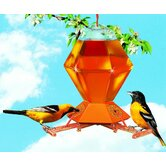 Deluxe Oriole Feeder