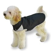 Spring Slicker Dog Coat in Black