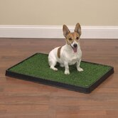 Indoor Dog Potty 20&quot; x 30&quot; Q
