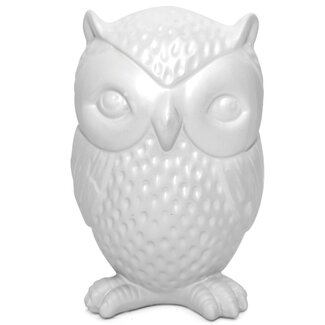 Kikkerland Coin Bank Owl