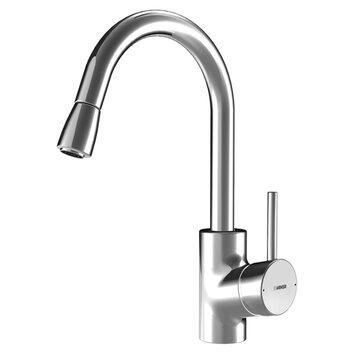 HansaCuisine e Handle Single Hole Kitchen Faucet with