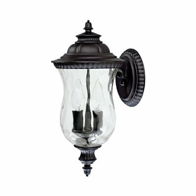 Capital Lighting Ashford 2 Light Outdoor Wall Lantern