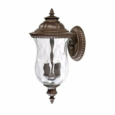 Capital Lighting Ashford Two Light Outdoor Wall Lantern in Tortoise