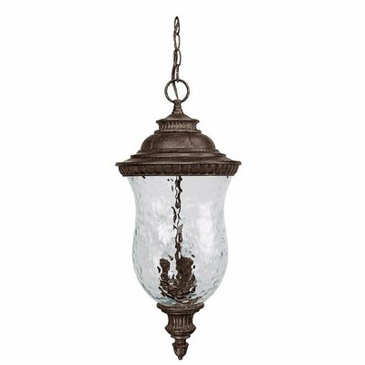 Capital Lighting Ashford Three Light Outdoor Hanging Lantern in Tortoise