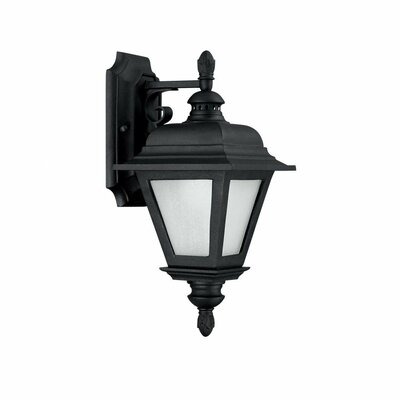 Capital Lighting Brookwood 1 Light Outdoor Wall Lantern