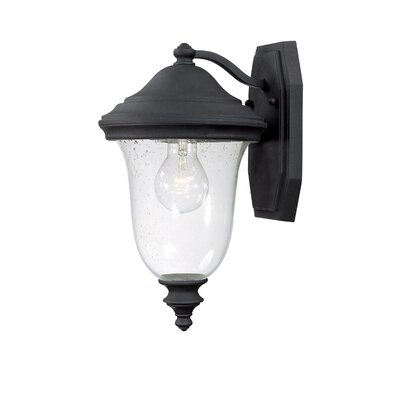 Capital Lighting Dawson 1 Light Outdoor Wall Lantern