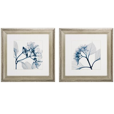 Hydrangeas Pos 2 Piece Framed Graphic Art Set