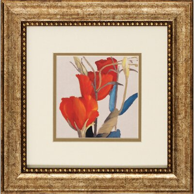 Grandiflorum I / II 2 Piece Framed Graphic Art Set (Set of 2)
