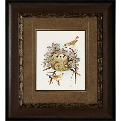 Propac Images Prarie / Golden Framed Art (Set of 2)