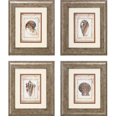 Propac Images Shell PrintArt 4 Piece Framed Painting Print Set