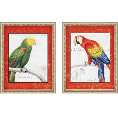 Parrot Botanique 2 Piece Framed Graphic Art Set