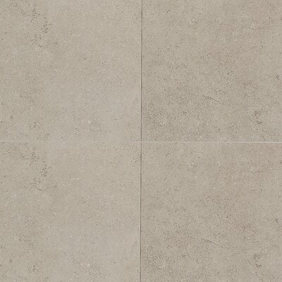 "Daltile City View 12"" x 12"" Field Tile in Skyline Gray"