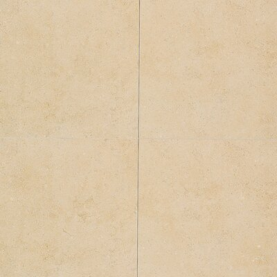 "Daltile City View 24"" x 24"" Field Tile in District Gold"