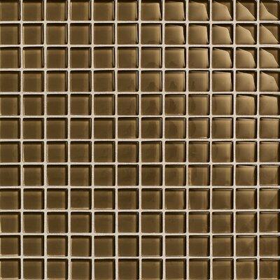 "Daltile Maracas Glass 1"" x 1"" Glossy Mosaic Tile in Tortoise"
